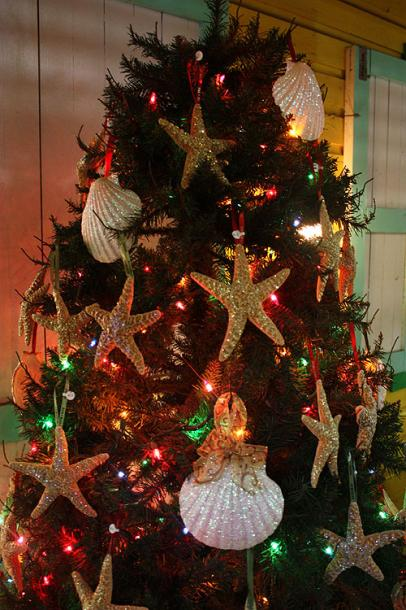 World Travel Photos :: Christmas :: Nassau. A Christmas tree - a Caribbean style