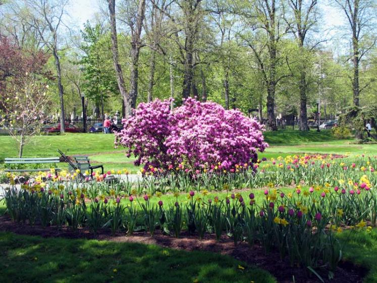 World Travel Photos :: Canada - Nova Scotia - Halifax :: Halifax. Public Gardens - blooming