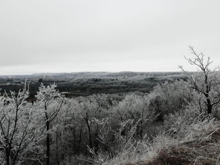 World Travel Photos :: Canada - Ontario - Misc :: Niagara Escarpment After Ice Storm