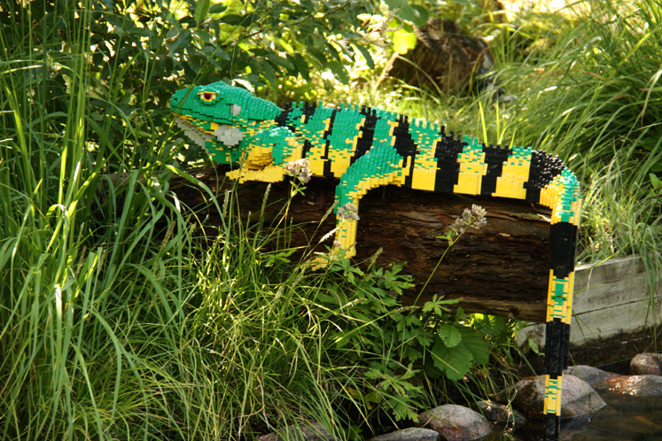 World Travel Photos :: Amusement & theme parks  :: Billund. Legoland - iguana