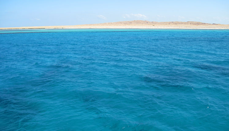 World Travel Photos :: Olga :: Egypt. Red sea