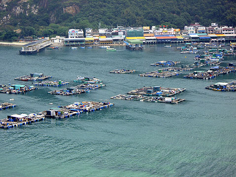 World Travel Photos :: China - Hong Kong - Lamma Island :: Hong Kong. Lamma Island - fish farms