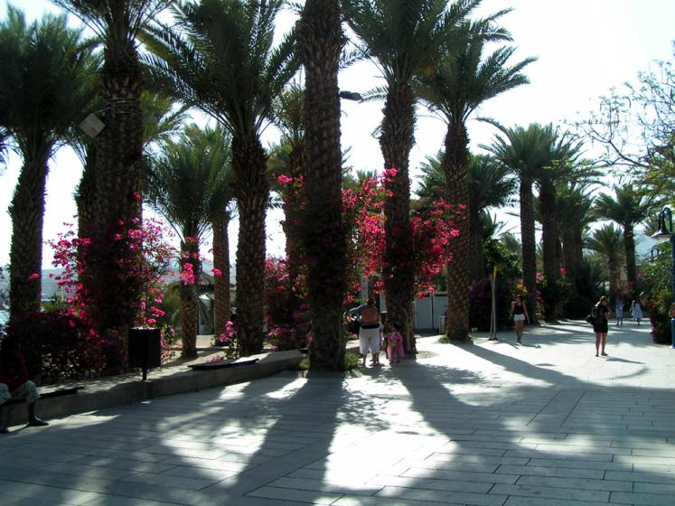 World Travel Photos :: Israel - Eilat :: Eilat