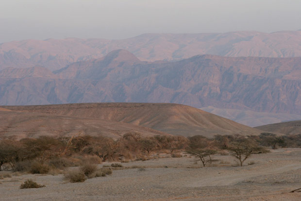 World Travel Photos :: Israel - Negev Desert :: Israel. Heat of Negev Desert