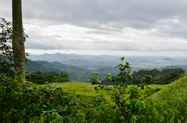 World Travel Photos :: Mountains :: Nimba Mountain   Liberia, Africa