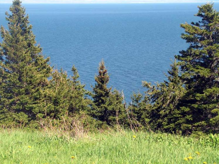 World Travel Photos :: Sea & ocean views :: Nova Scotia. Sunrise Trail - ocean view