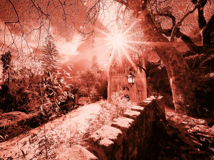 World Travel Photos :: Portugal :: Sintra. Quinta da Regaleira - sunlight creates a magical view