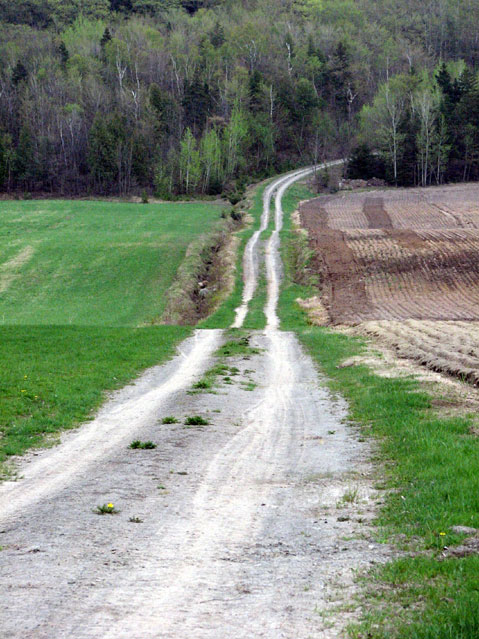 World Travel Photos :: Roads :: Ile d´Orleans, Quebec - road across the island