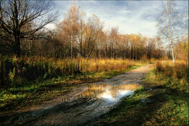 World Travel Photos :: Fall views :: Moscow. A park in kuskovo - after the rain