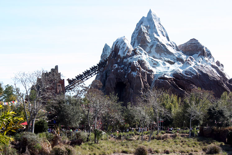 World Travel Photos :: Amusement & theme parks  :: Orlando - Animal Kingdom - Mountain Everest