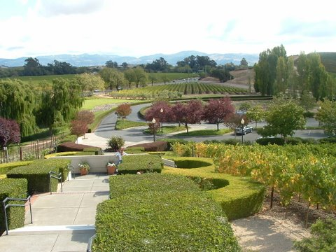 World Travel Photos :: USA - Misc :: San Francisco. Winery