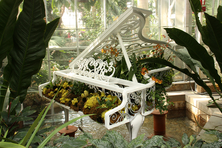 World Travel Photos :: Feel good photos :: Washington DC - a grand piano filled with flowers, Botanical Garden